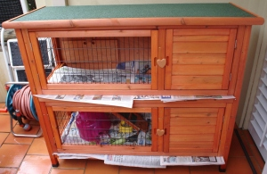 A wooden two storey guinea pig hutch, lined with newspaper. Some food and a small pink guinea pig house are visible inside.